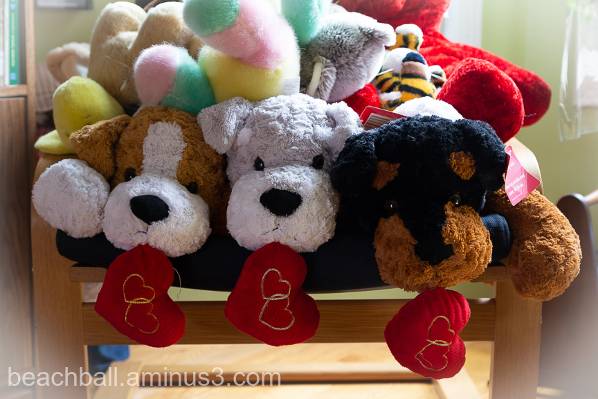 Three stuffed toy dogs