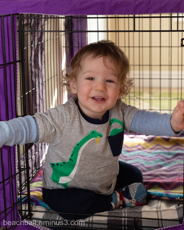 little boy in a dog cage