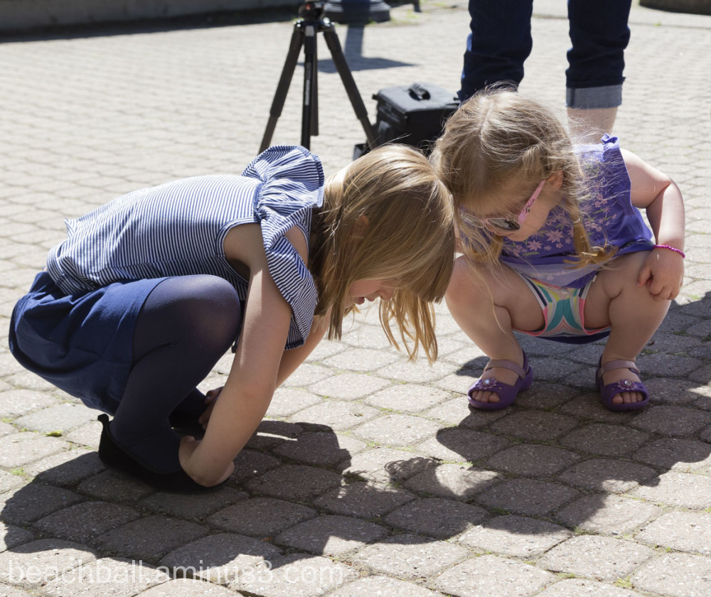 two girls watching ants