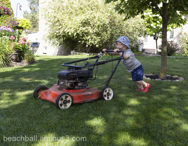 Little boy with lawnmower
