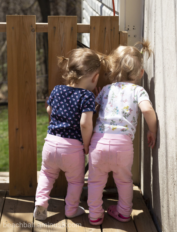Twin girls trying to look through gate