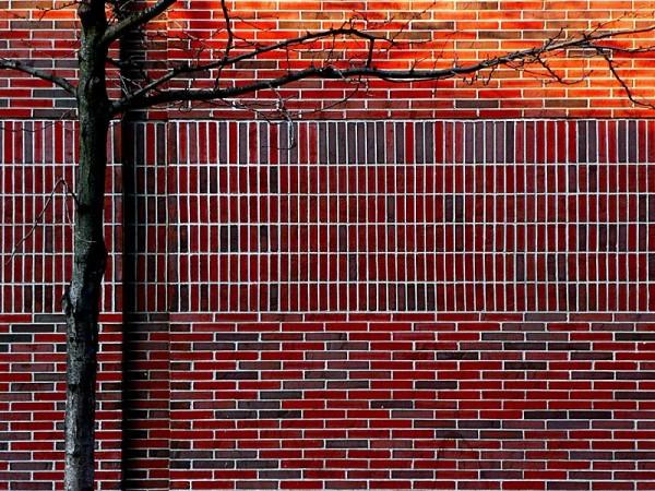 photo by Ray Rebortira, wall