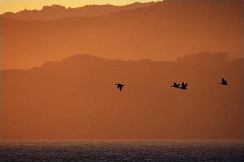 Sunset at San Francisco bay