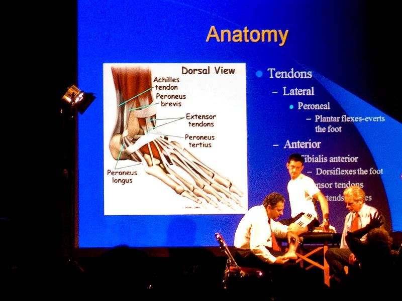 Orthopedic examination done during PriMed lecture