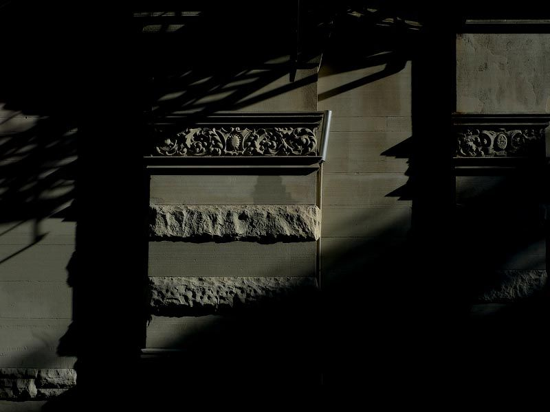 Shadows in the morning