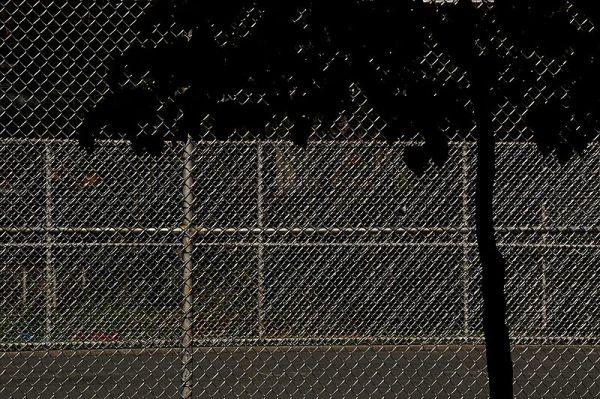Fence near Pratt Institute
