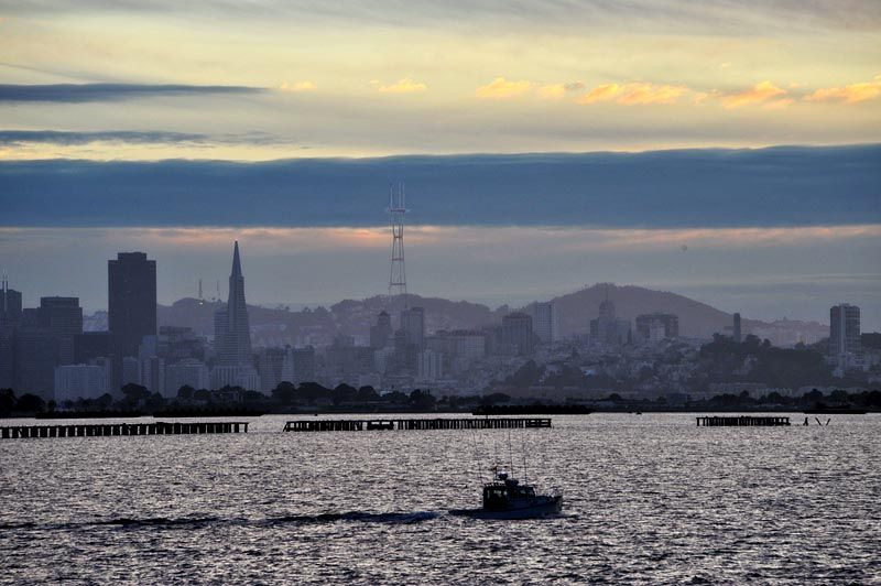 A view of San Francisco skyline