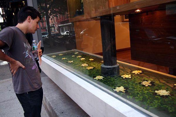 Window shopping in NoLita, New York City