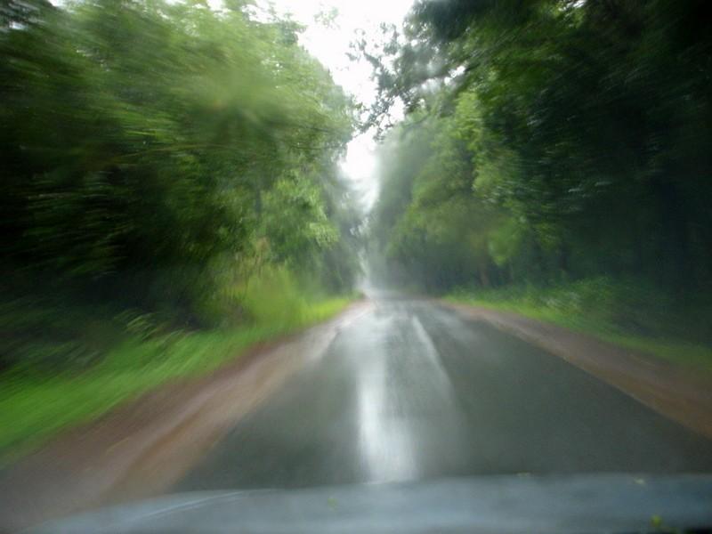 Drive in Monsoon
