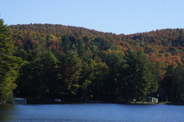 Fall on Benoir