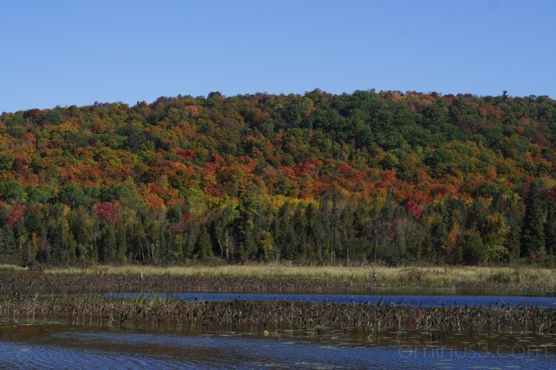 Fall on Benoir (2)