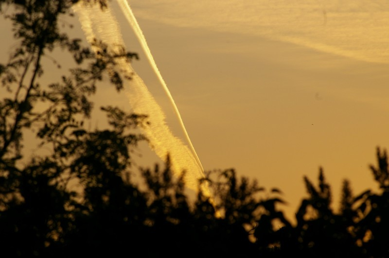 Aeroplane traces