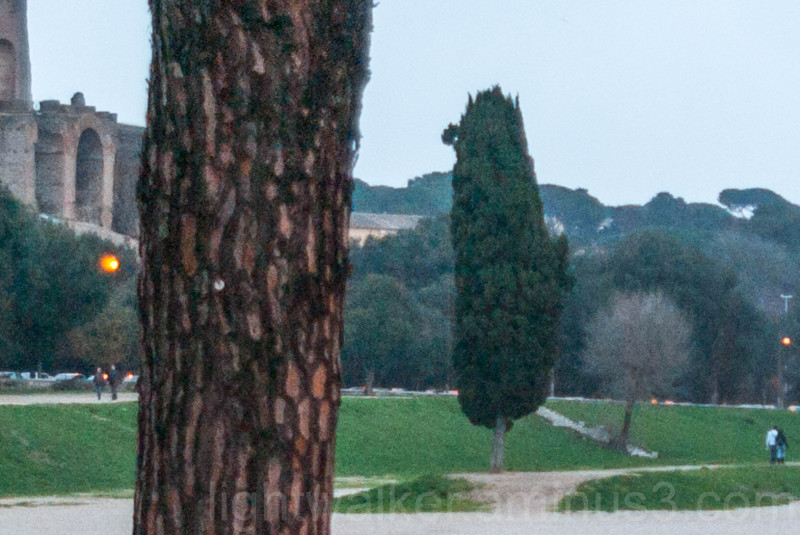 A blow-up section of Circus Maximus