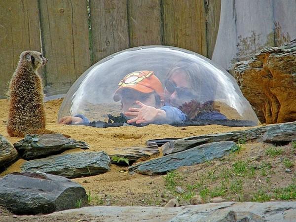 la bulle - the bubble I