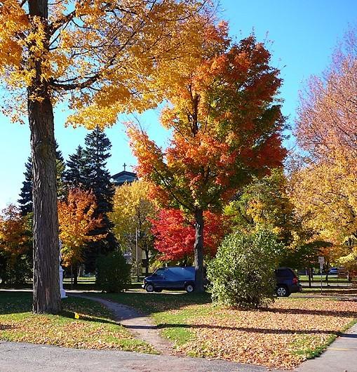 belle journée d'automne