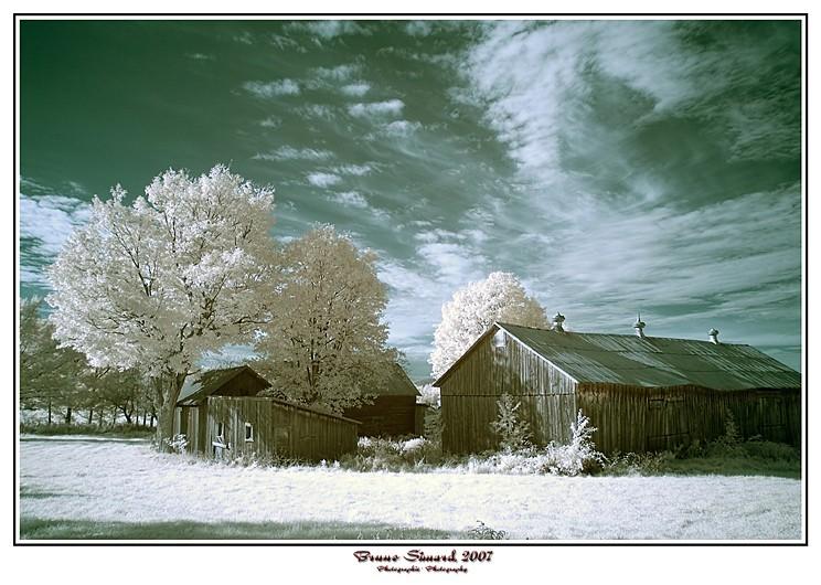 belle journée d'automne dans le rang bergeron