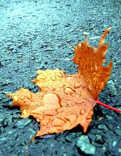 une belle journée d'automne