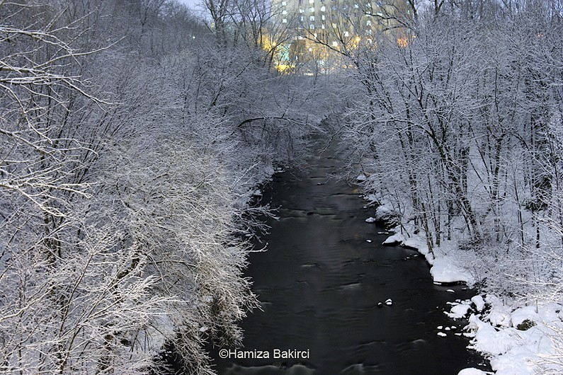 la rivière yamaska - the yamaska river