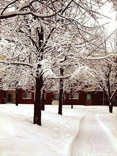 neige I - snow I