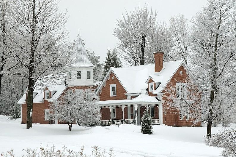 beauté de l'hiver - winter beauty
