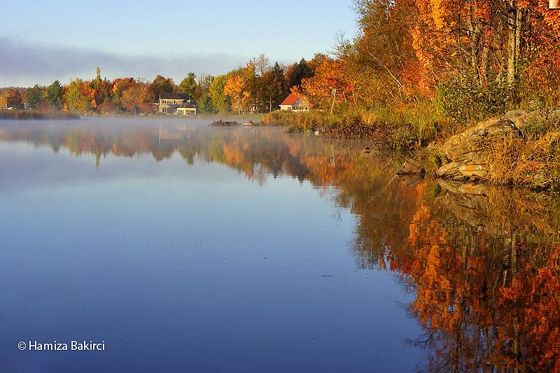 les couleurs d'automne - autumn colors