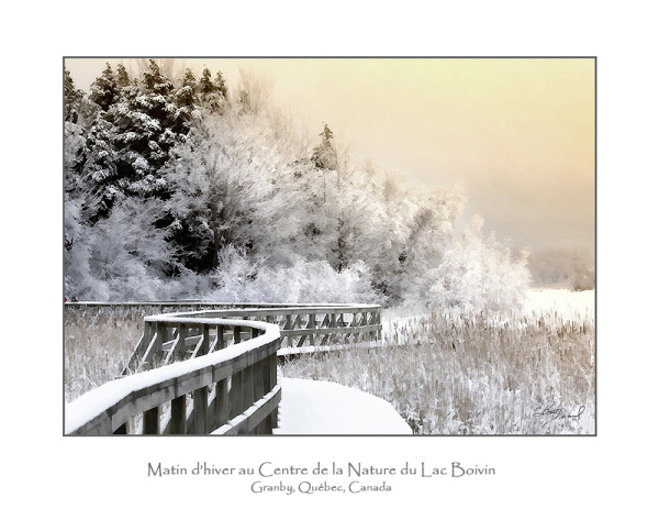 matin d'hiver au centre de la nature du lac Boivin