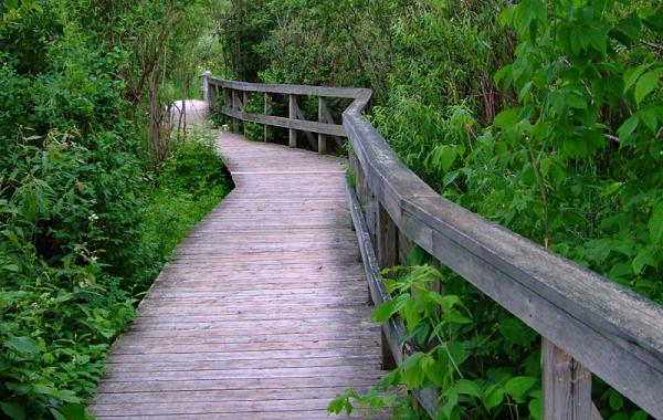calme promenade - quiet walk