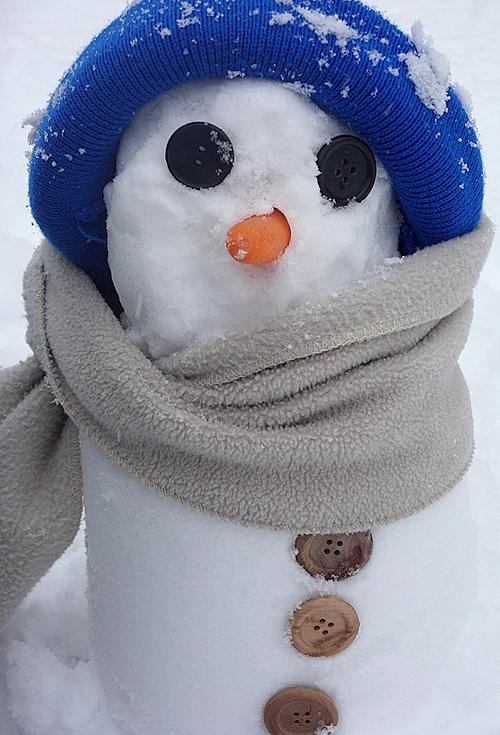 notre petit bonhomme de neige - our pocket snowman