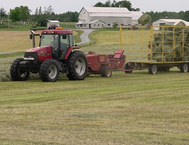 récolte de foin - hay harvesting