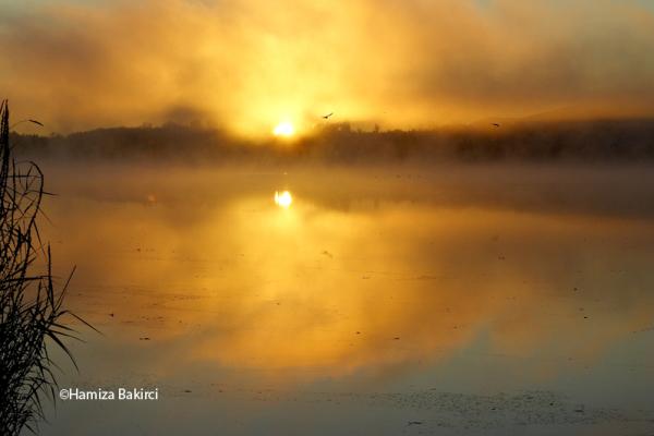 l'automne sur le lac Boivin - autumn on the lake