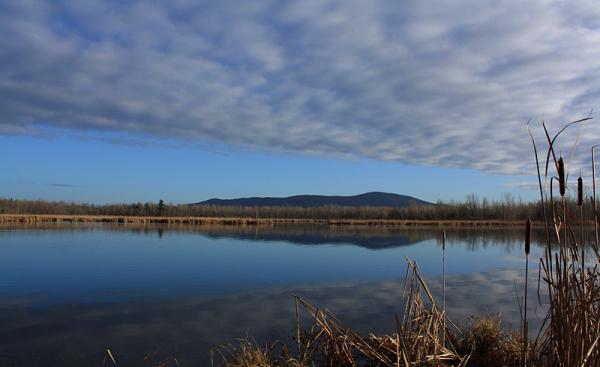 moment de réflexion - time for reflection
