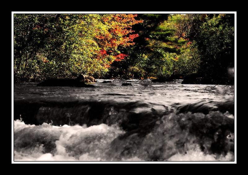 la yamaska en automne - yamaska river in autumn