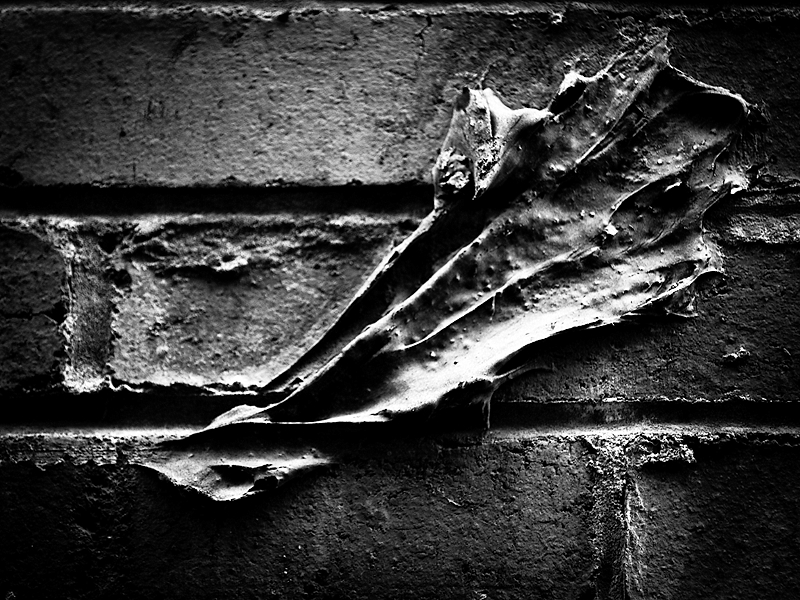 laisser sa trace - leave his mark
