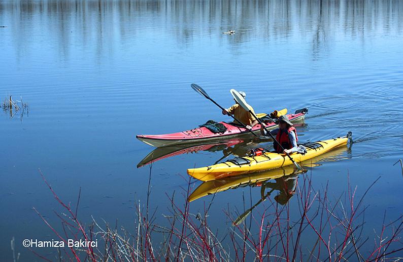 balade sur le lac - ride on the lake