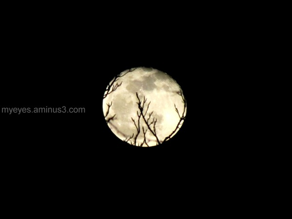 I was looking at the moon, last March
