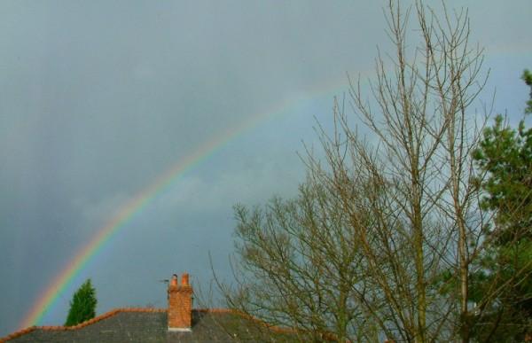 Rainbow, January 2004