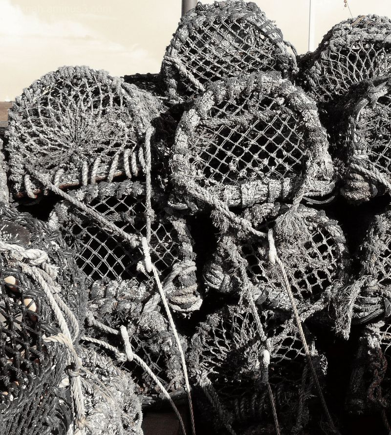 Lobster Pots at Paignton Harbour