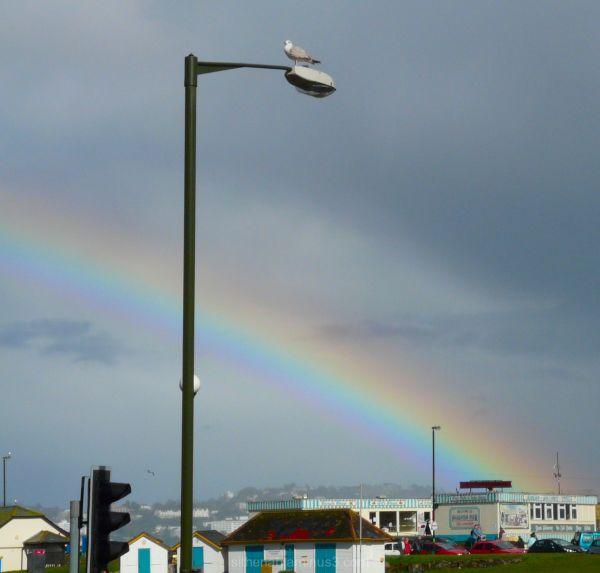 rainbow at paignton devon