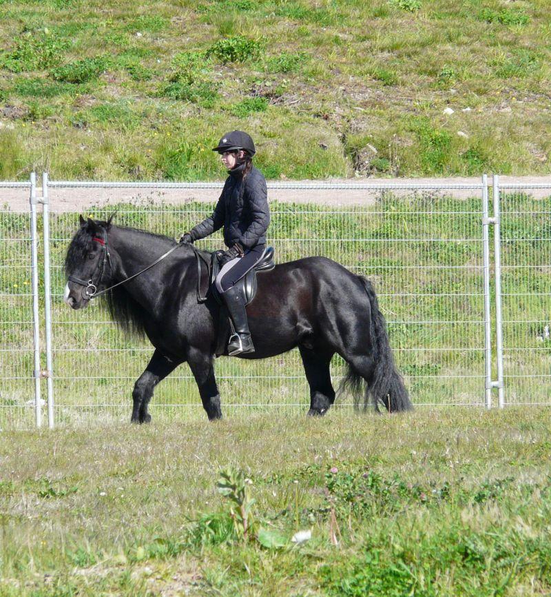 Rider on Rayners Lane, Ashton Moss