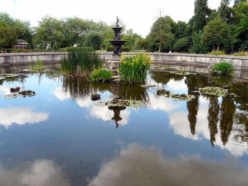 Lily Pond Vernon Park Stockport