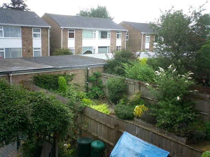 Next door's back garden
