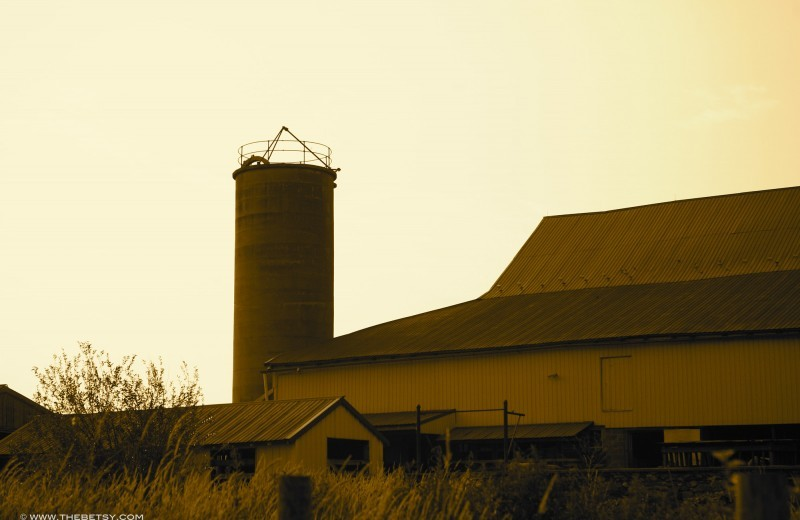 chester springs creamery barn pennsylvania sepia