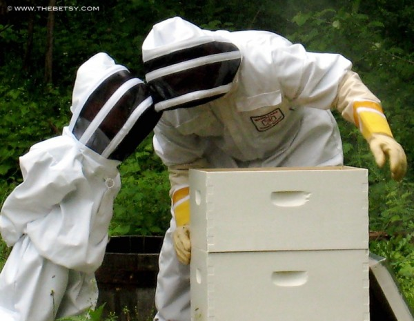 apiary beekeeping bee suits www.thebetsy.com
