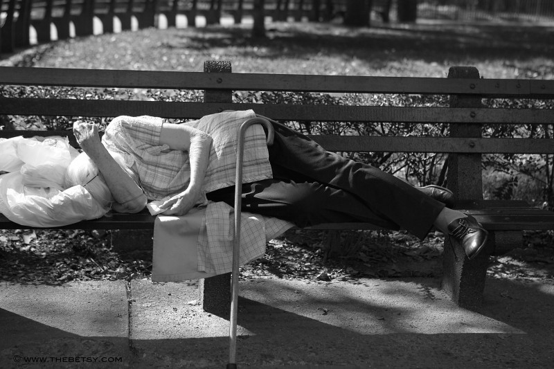 elderly sleeping park bench