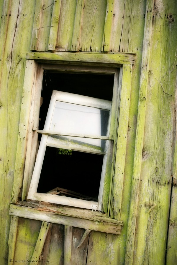 window conestoga road elverson