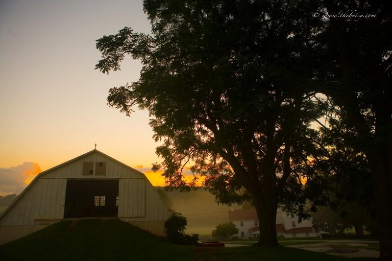 good morning barn glenmoore
