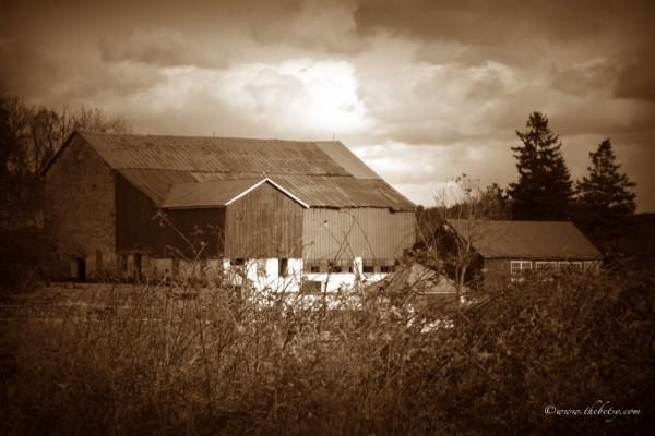 chester springs barn birchrunville
