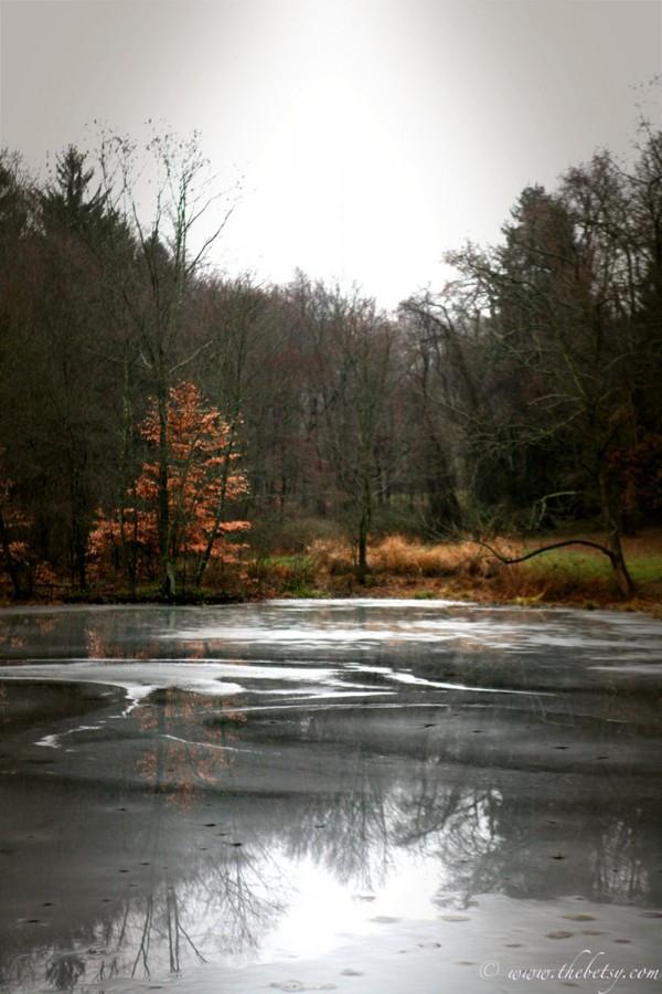 birchrunville morning ice pond