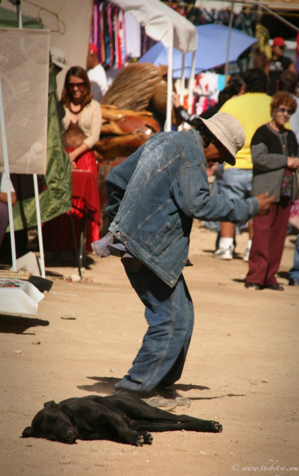 todos santos artist market man dancing with dog