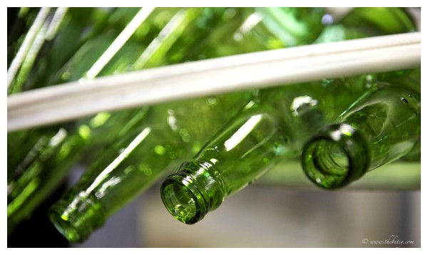 yuengling brewery green glass bottles